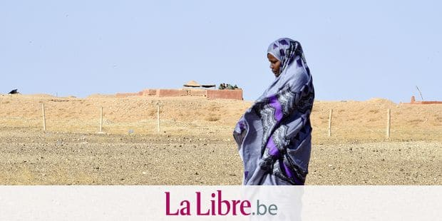 "Zghala, a Saharawi woman, stands near an outlook post of Moroccan soldiers in the Al-Mahbes area as she accompanies her 14-year-old son to show him the wall separating the Polisario controlled Western Sahara from Morocco on February 3, 2017. - It is the world's oldest functioning security barrier, dubbed a wall of ""shame"" and ""death"" by Western Sahara residents and leaders who want independence from Morocco. (Photo by STRINGER / AFP) / TO GO WITH AFP STORY BY AMAL BELALLOUFI"