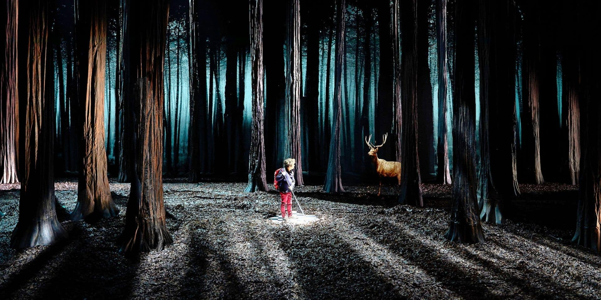 """L'univers fascinant d'Étienne Saglio: """"La forêt nous réconcilie avec nous-mêmes"""""""