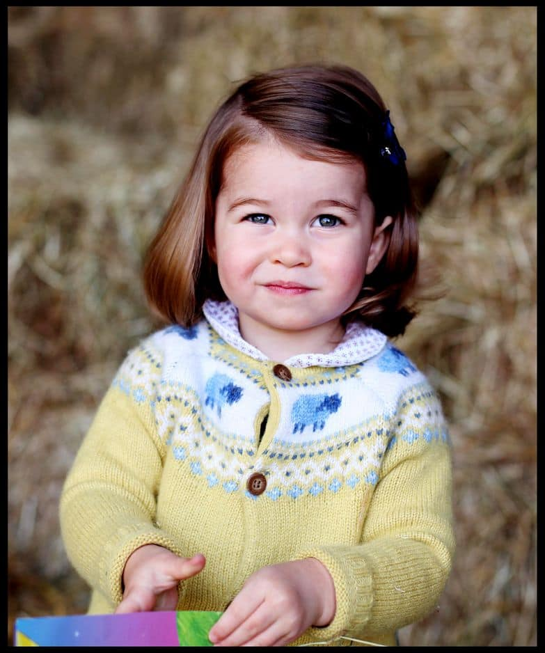 La photo officielle diffusée au moment de ses 2 ans, le 2 mai 2017.