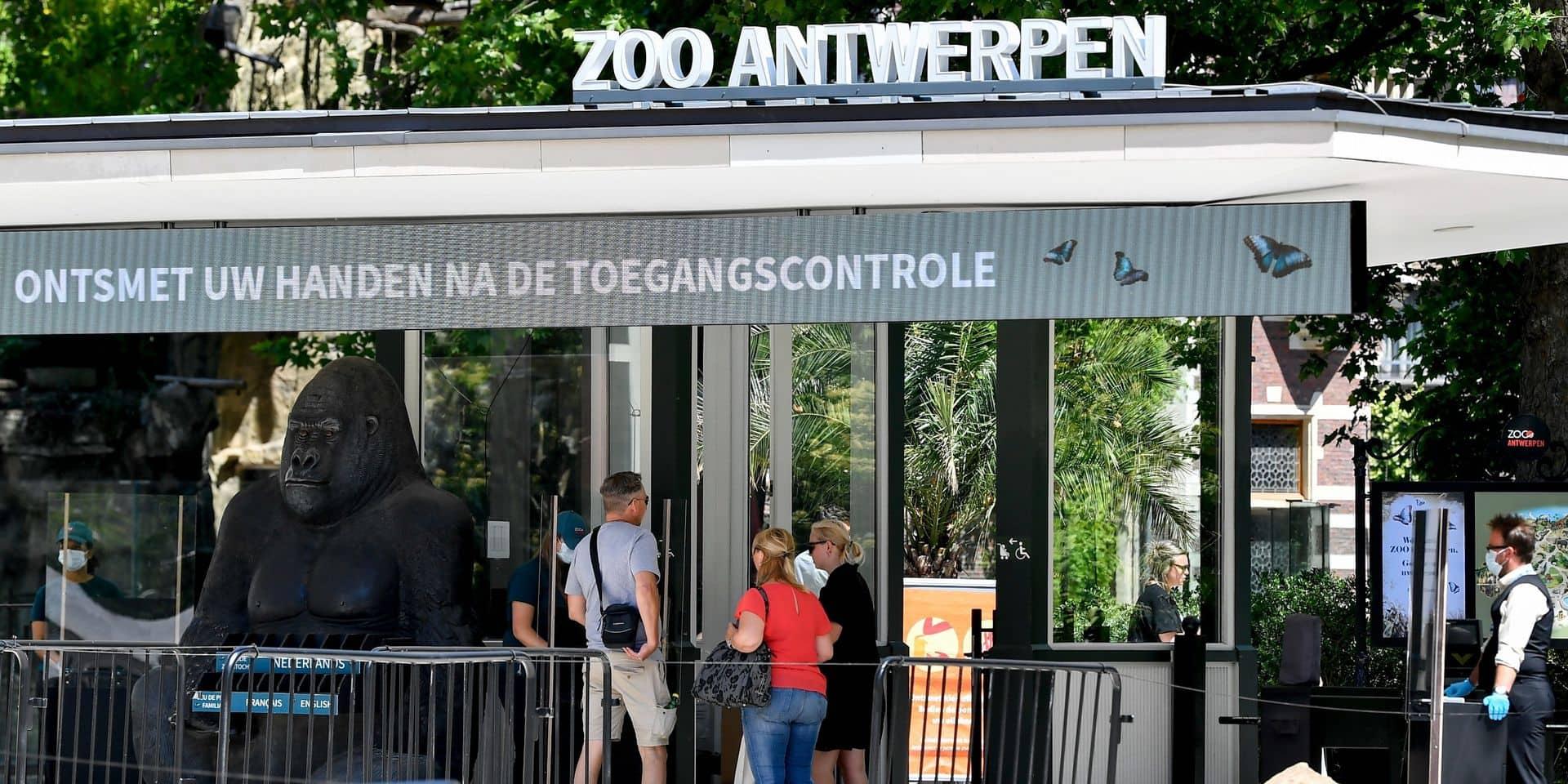Des activistes bloquent l'entrée du zoo d'Anvers