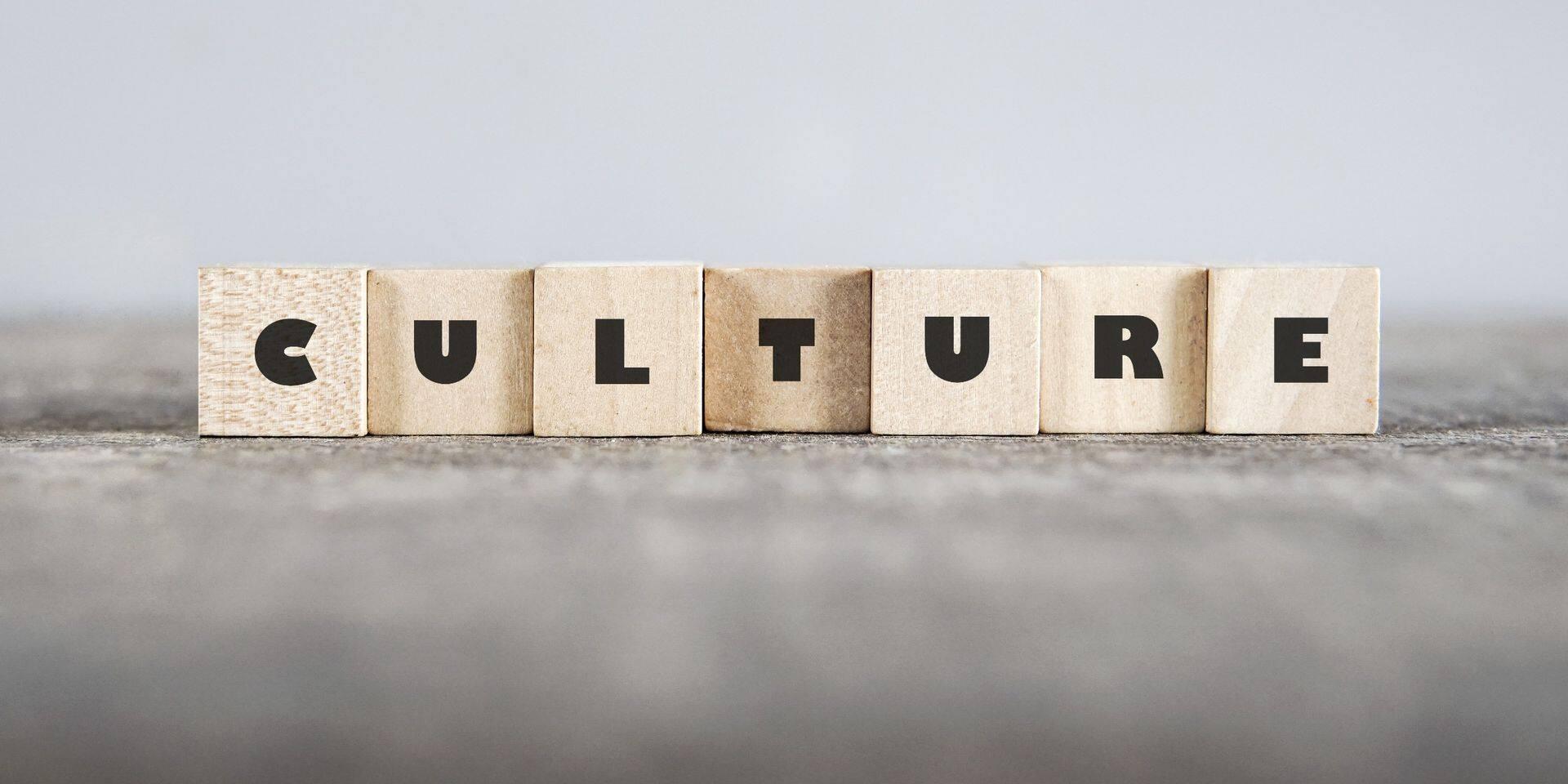 """""""La culture n'est pas une variable d'ajustement!"""" : 500 organisations du monde culturel expriment leur colère dans une carte blanche"""