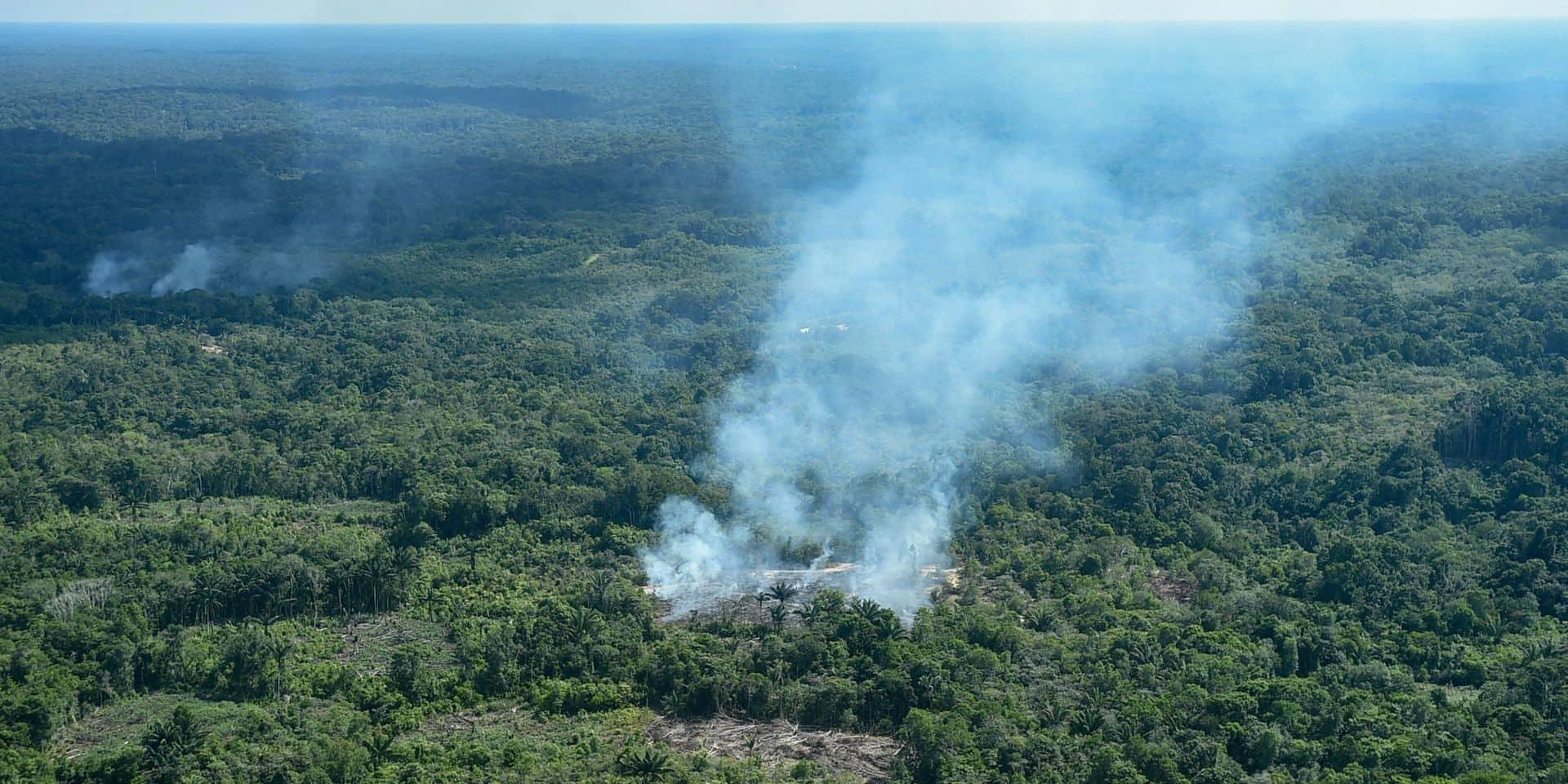 Ces services que la forêt amazonienne fournit à toute la planète