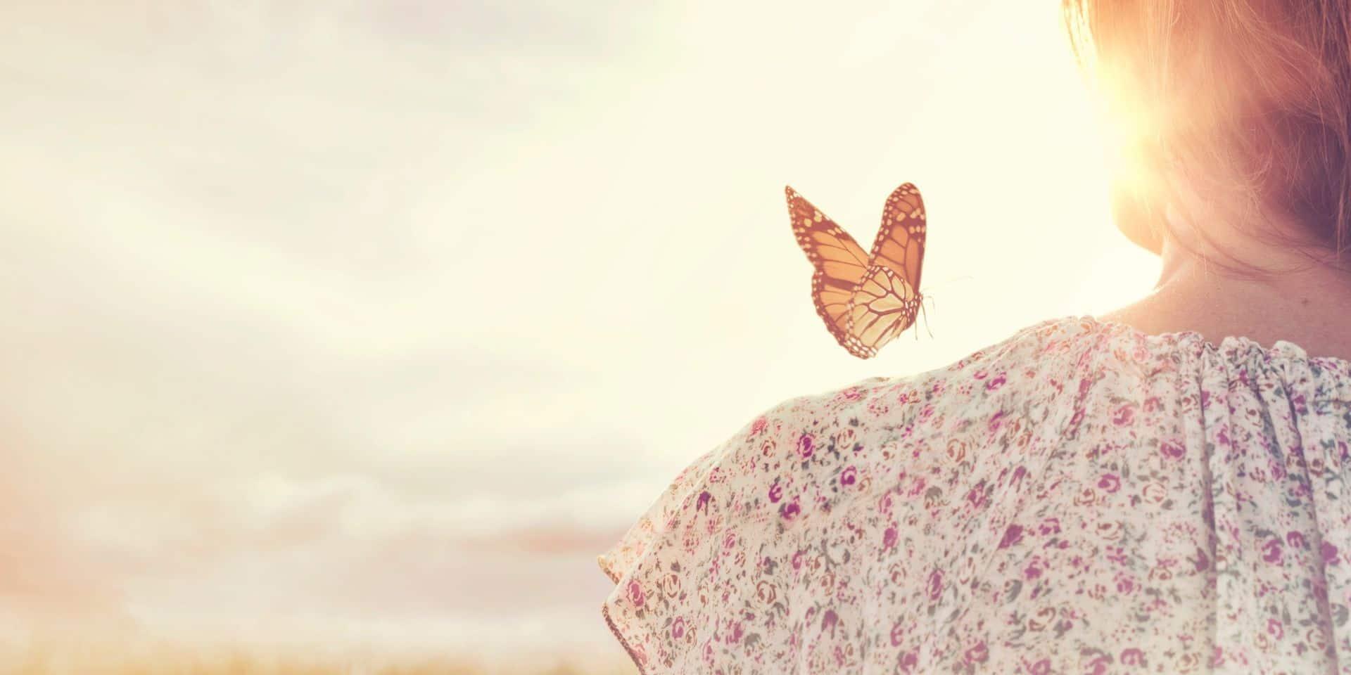 Durant le mois de juillet, les citoyens sont invités à ... compter les papillons!