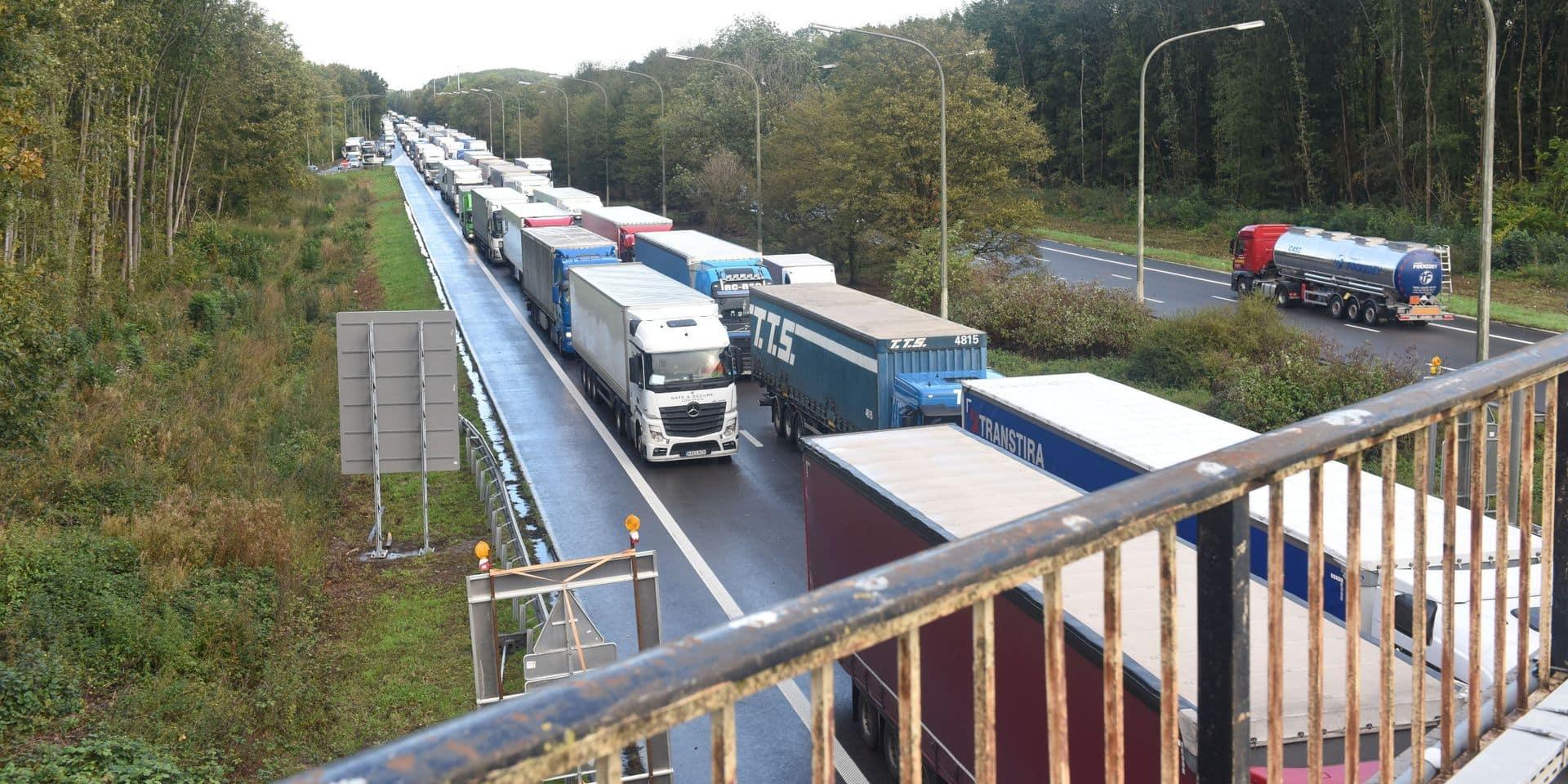 Brexit : la Flandre a un plan d'urgence pour éviter les files de camions