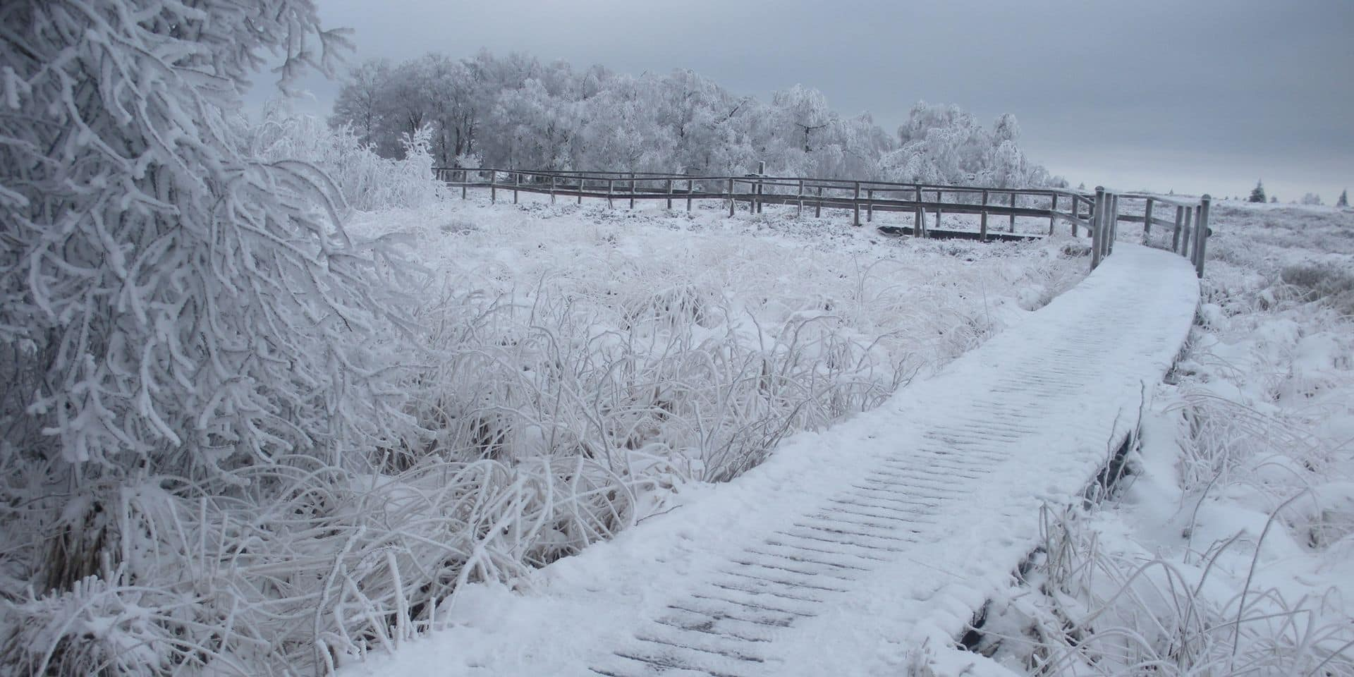 Jusqu'à 15 centimètres de neige en Belgique, le numéro 1722 activé