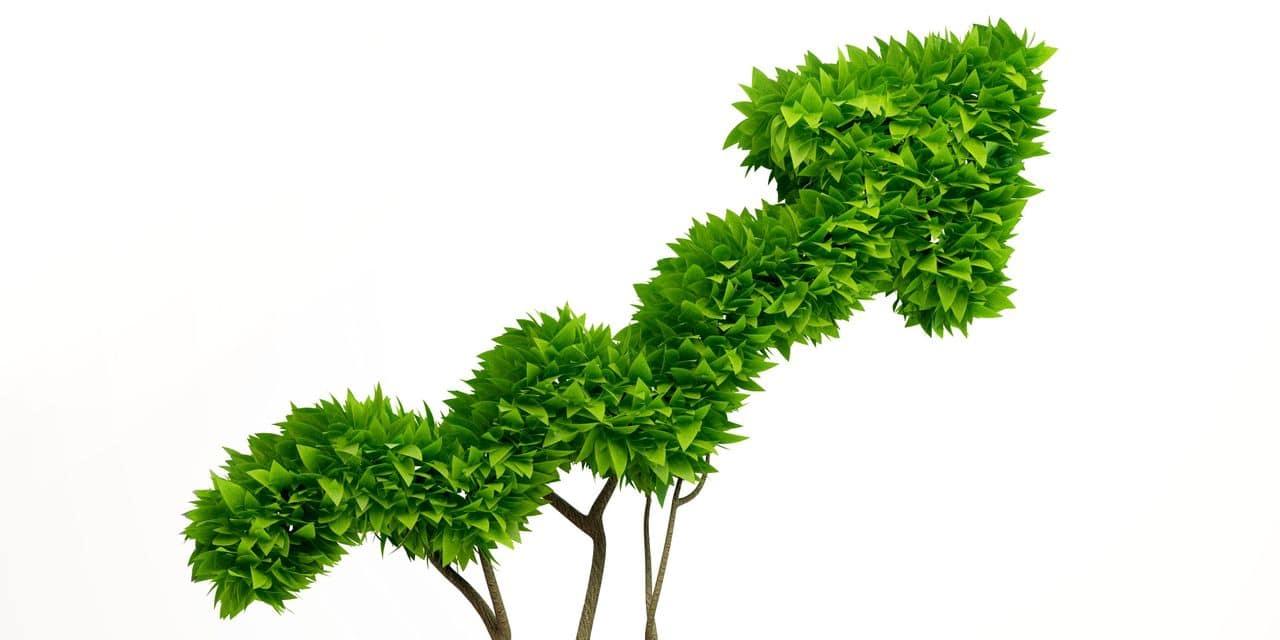 La Banque européenne d'investissement promet d'être plus «green» dès 2022