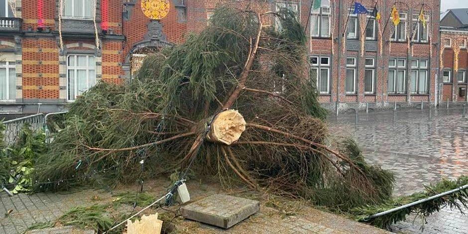 Soignies: la tempête Bella a eu raison du sapin de Noël