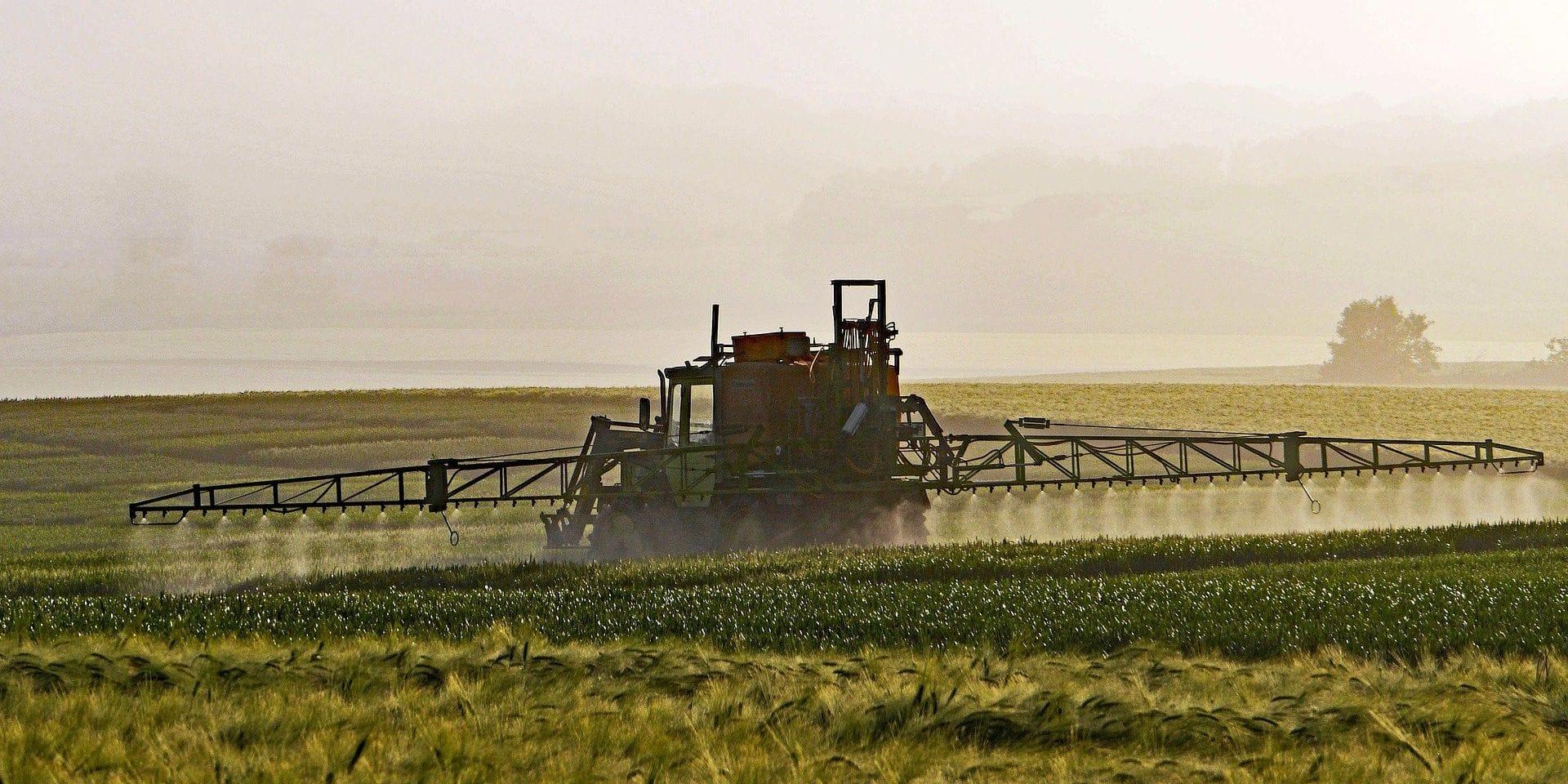 Nous avons besoin de pesticides contre les espèces invasives