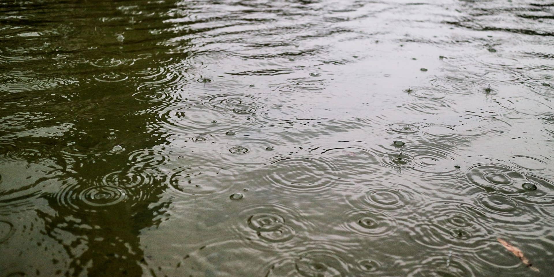 Météo: Un temps progressivement plus sec