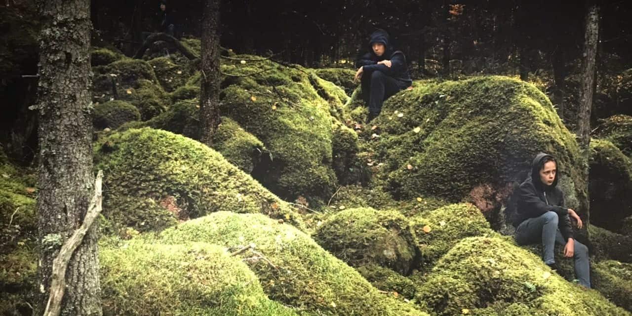 L'art pour redécouvrir le merveilleux parc d'Enghien