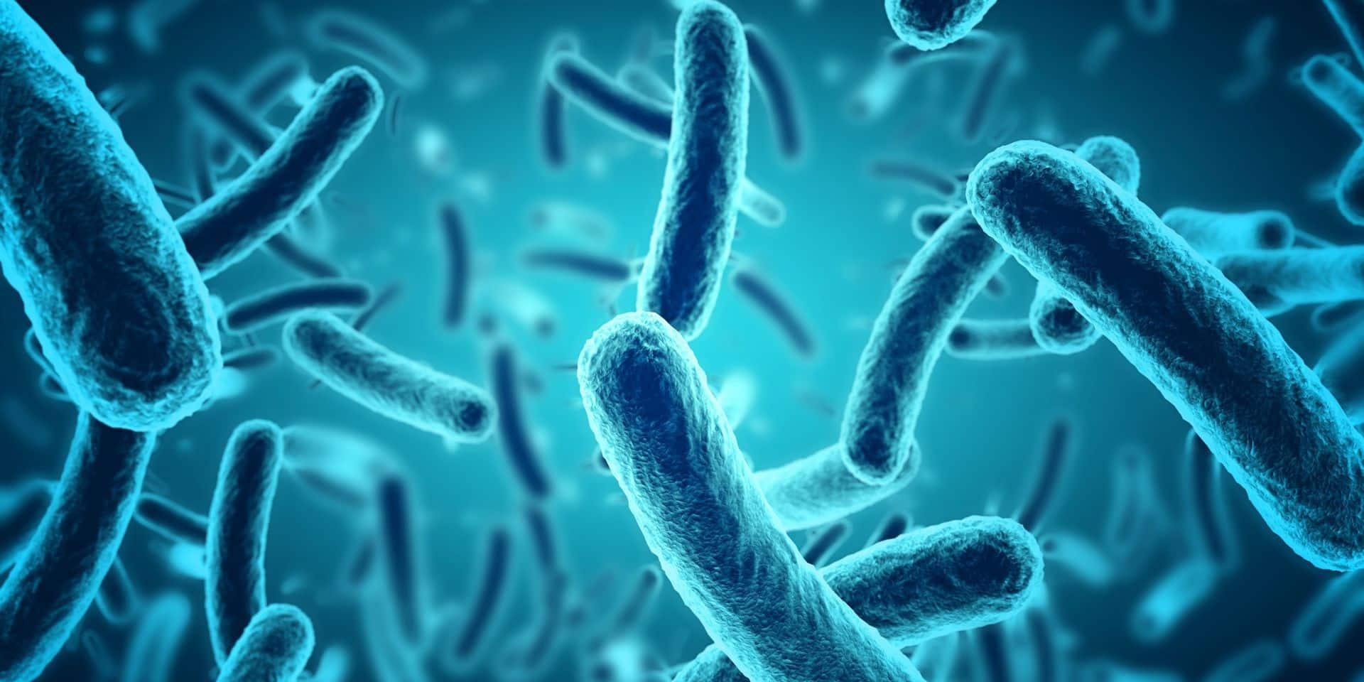 Bactéries, virus, parasites… Ces micro-organismes dotés de macro-pouvoirs