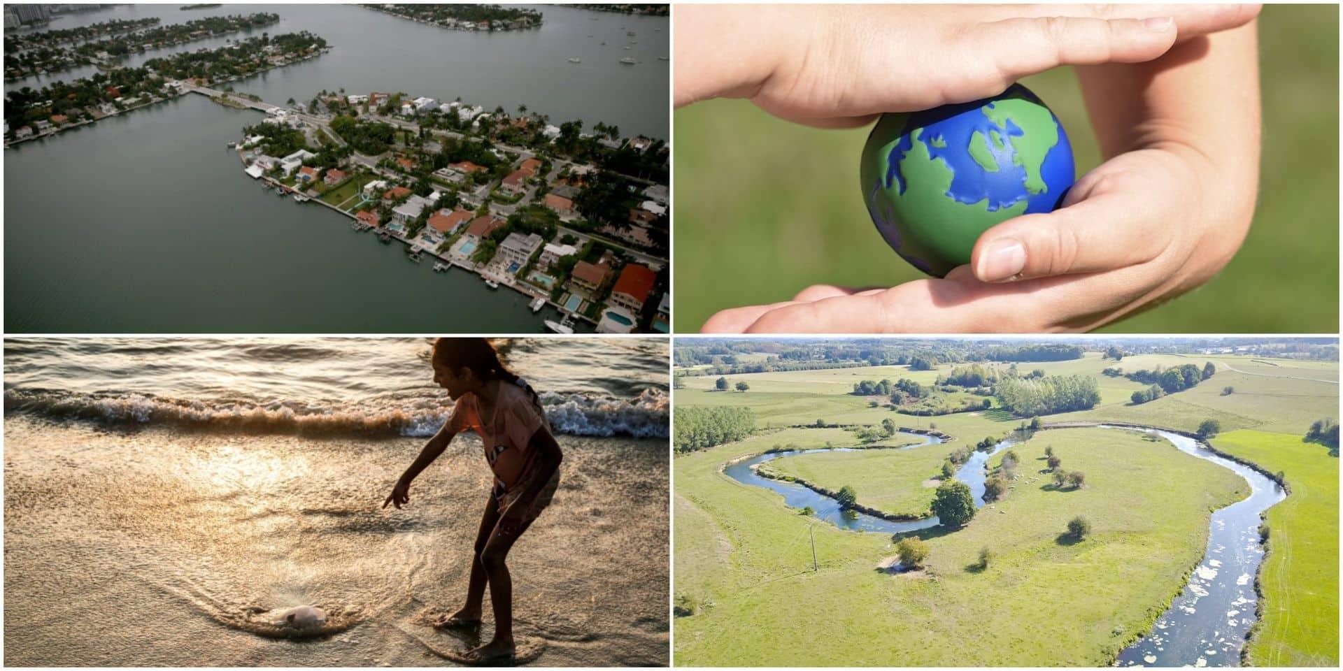 """11.000 scientifiques mettent en garde face à la """"crise climatique"""": """"L'humanité s'expose à des souffrances sans nom"""""""