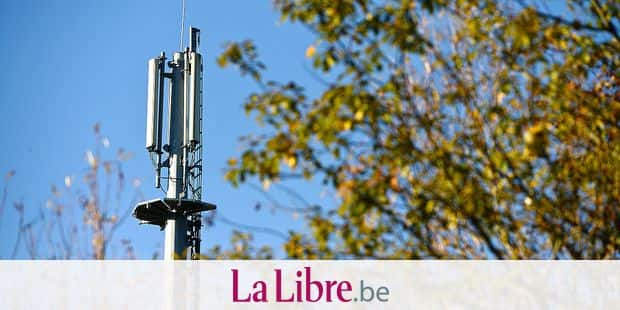 antennes gsm telephonie mobile reseau internet 3G 4G onde pilone poteau electricite proximus mobistar orange sfr telephone arbre