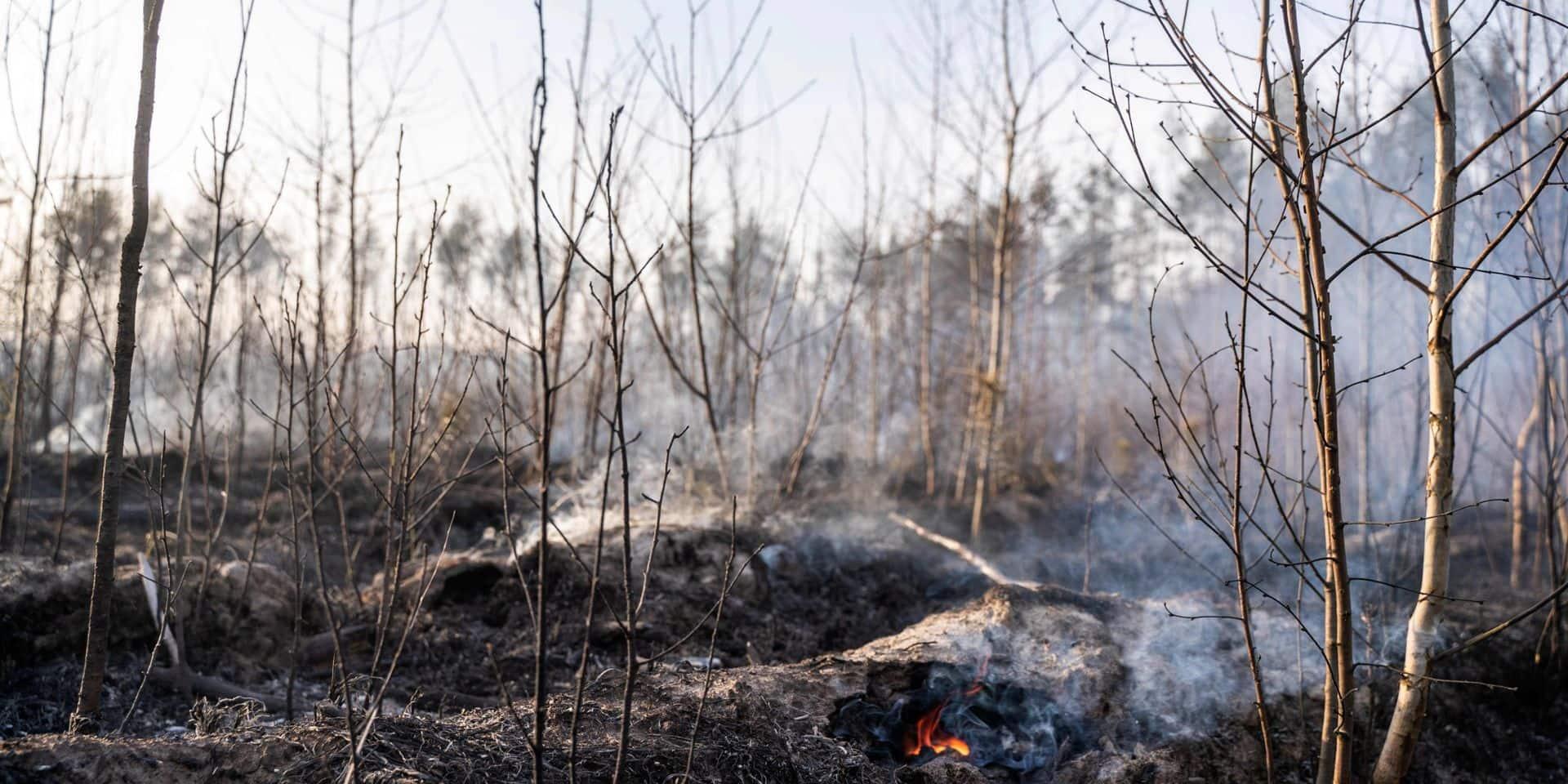 Feu de forêt à Tchernobyl: Kiev assure que la situation s'améliore