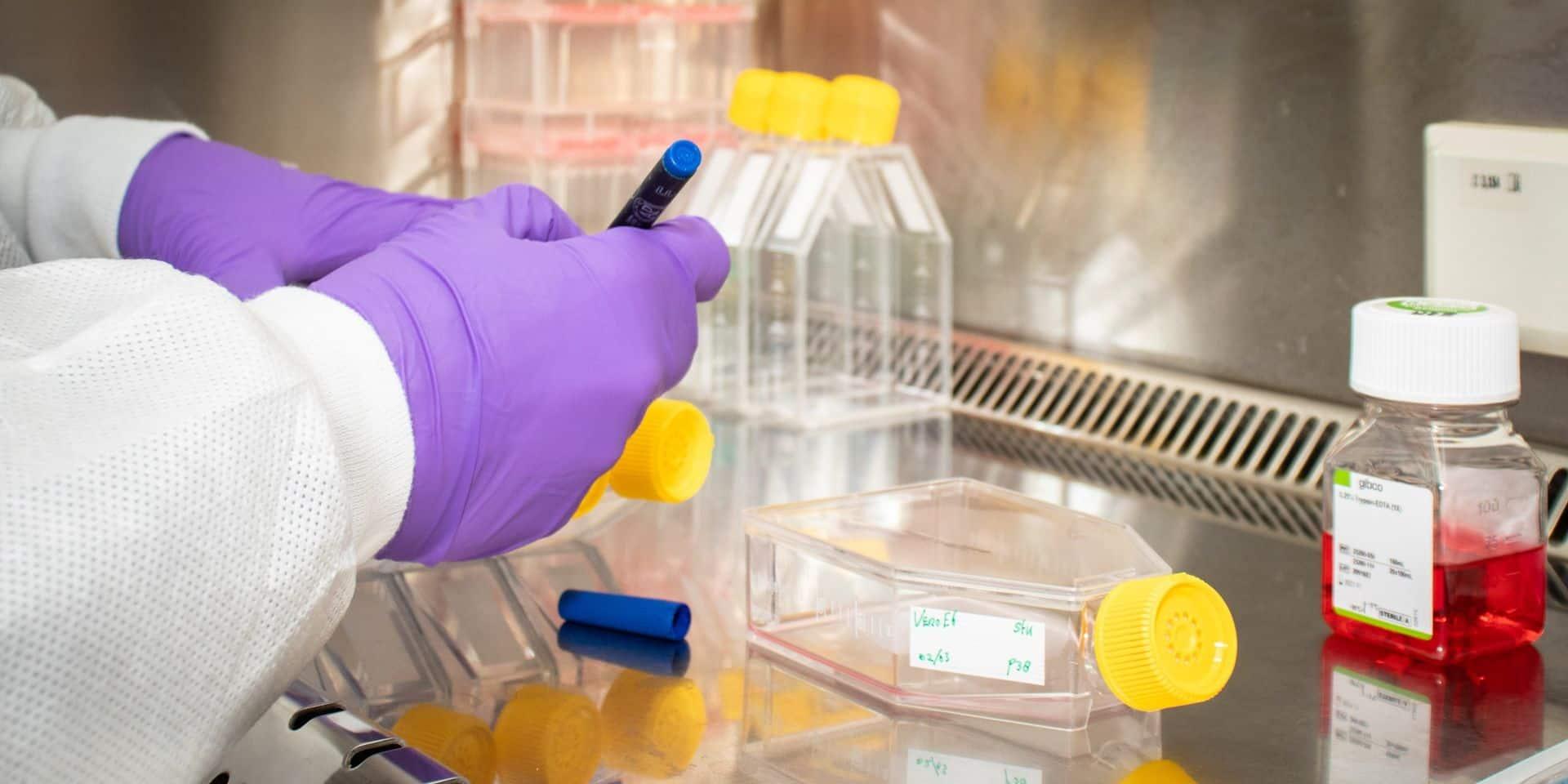 Pourquoi certains pays sont-ils plus touchés que d'autres par le coronavirus? Des chercheurs belges pensent avoir trouvé une explication