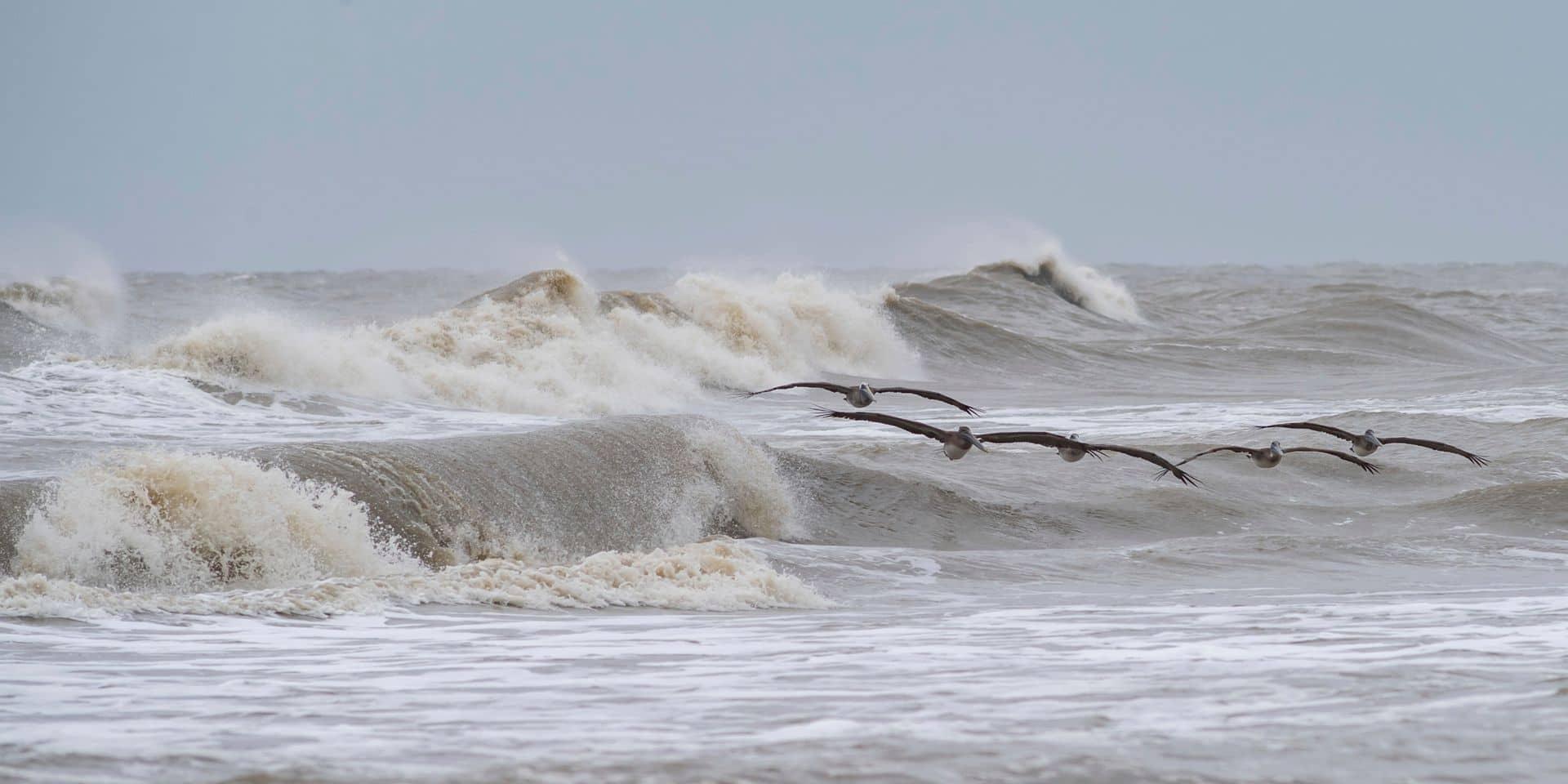 Des vents violents sont attendus à la côte.
