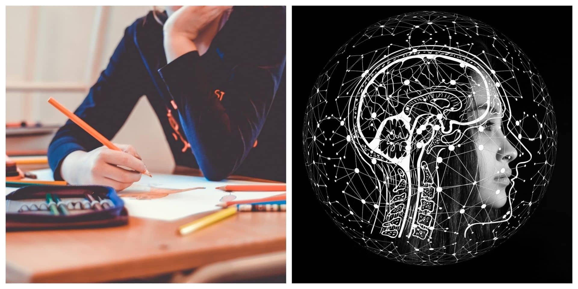 Les neurosciences vont-elles sauver l'école ?