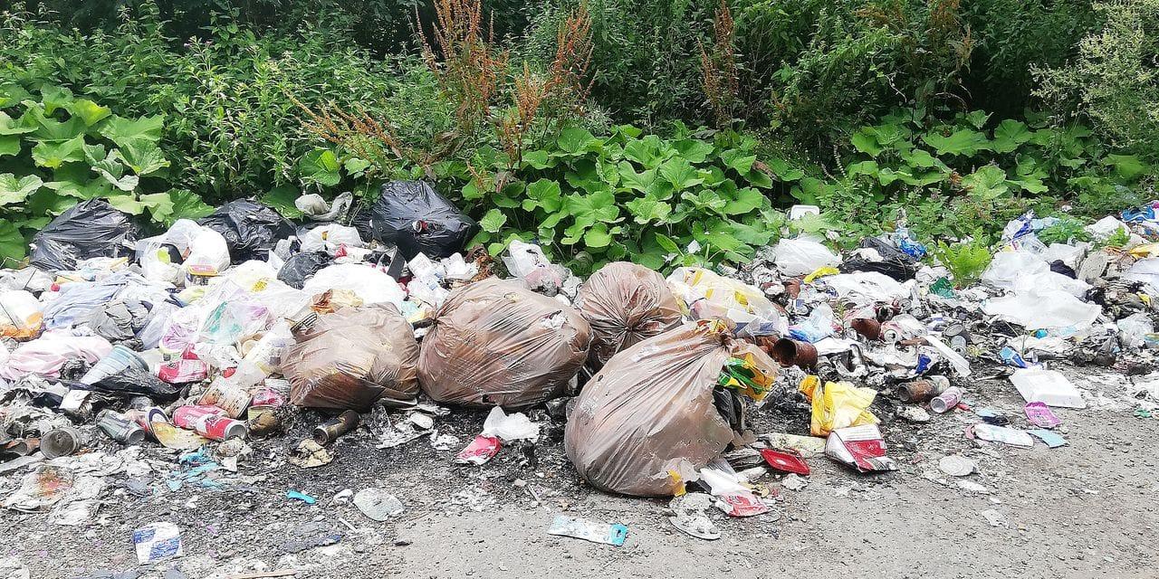 L'incessant problème des déchets de Pincemaille