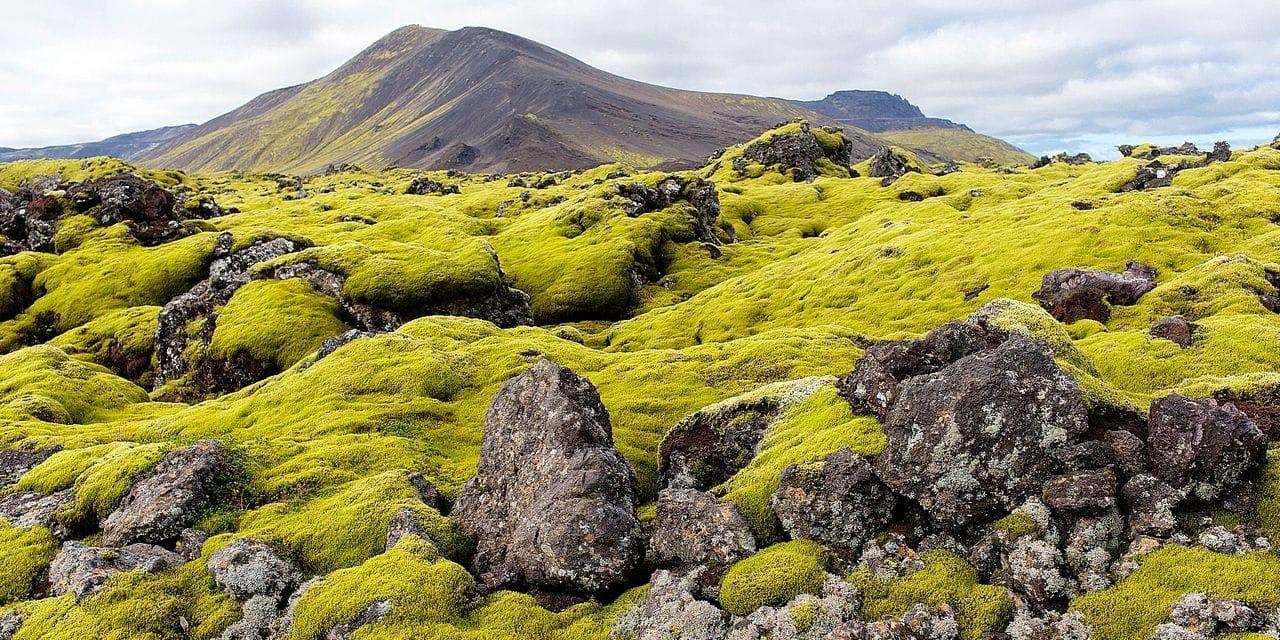 Drogue et sexe en Islande