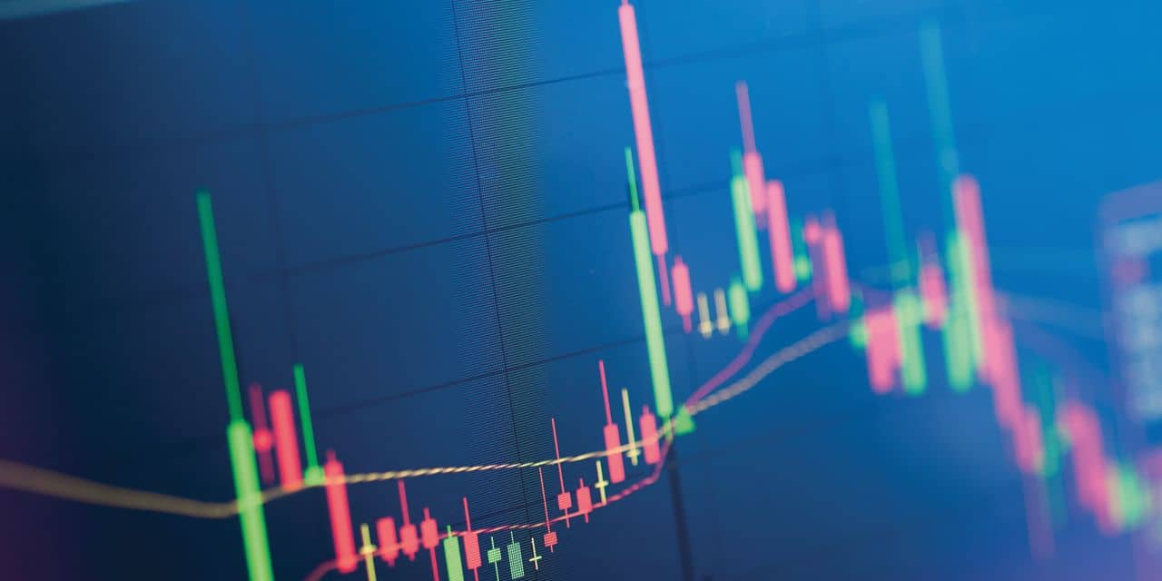 Investir en sicav ou en actions individuelles?