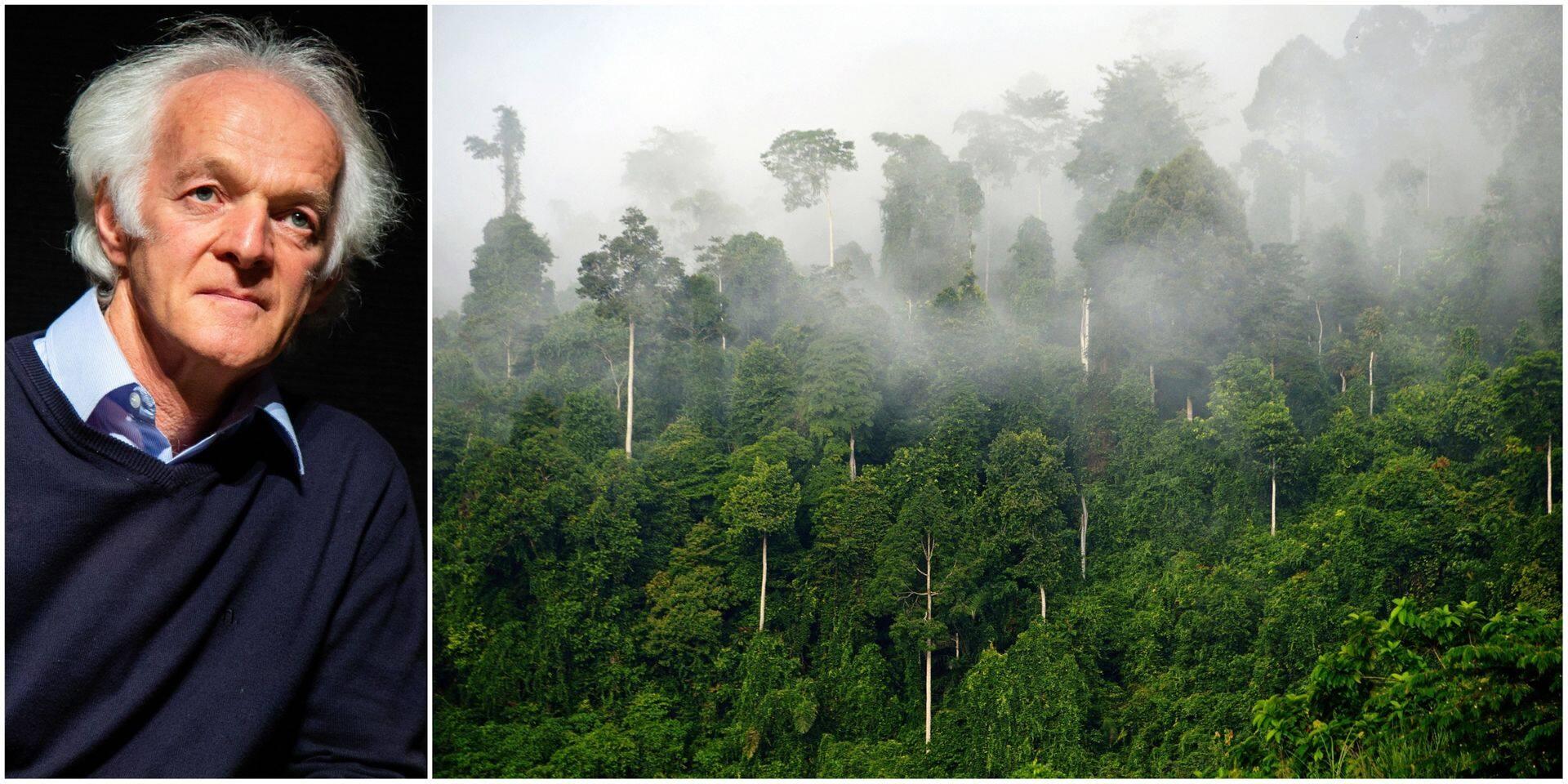 """""""Face au changement climatique, redonnons à la forêt son intelligence"""""""