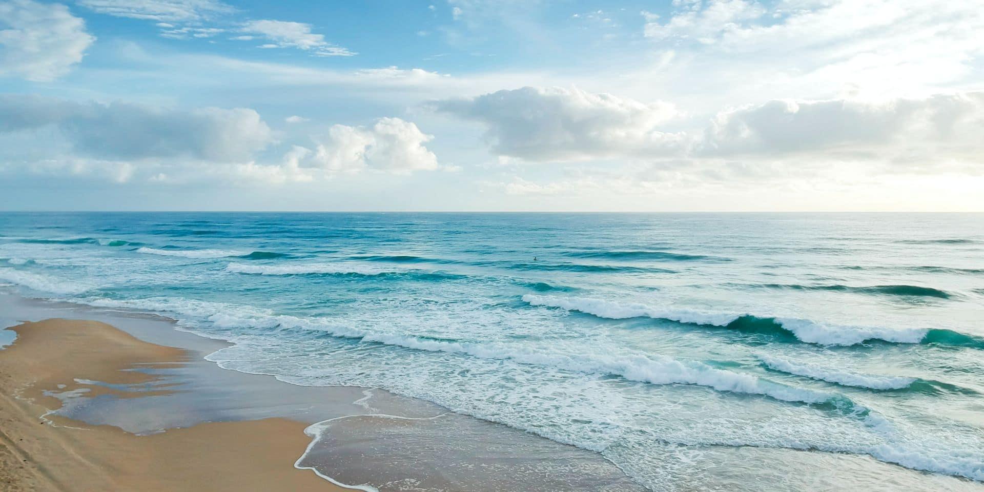 Coronavirus: le ministre néo-zélandais de la Santé bafoue le confinement pour aller... à la plage
