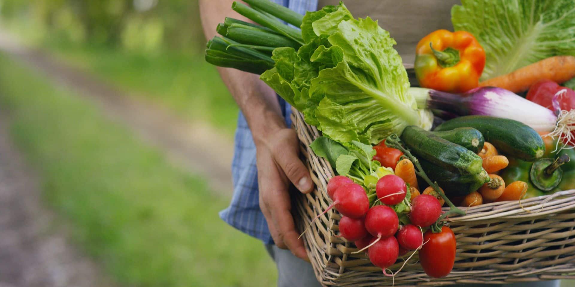 Une alimentation moins chère et plus écologique, c'est possible