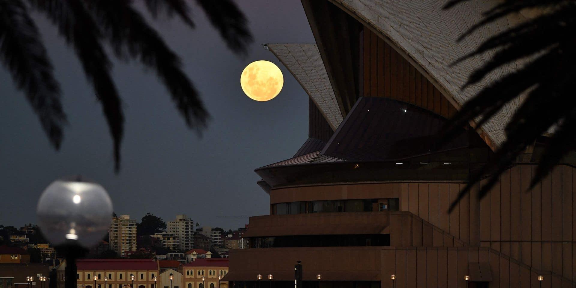 Ce midi, regardez en direct l'éclipse totale de Lune dans le Pacifique