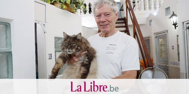 Visite au Charaton, pension quatre étoiles pour chats à Ixelles