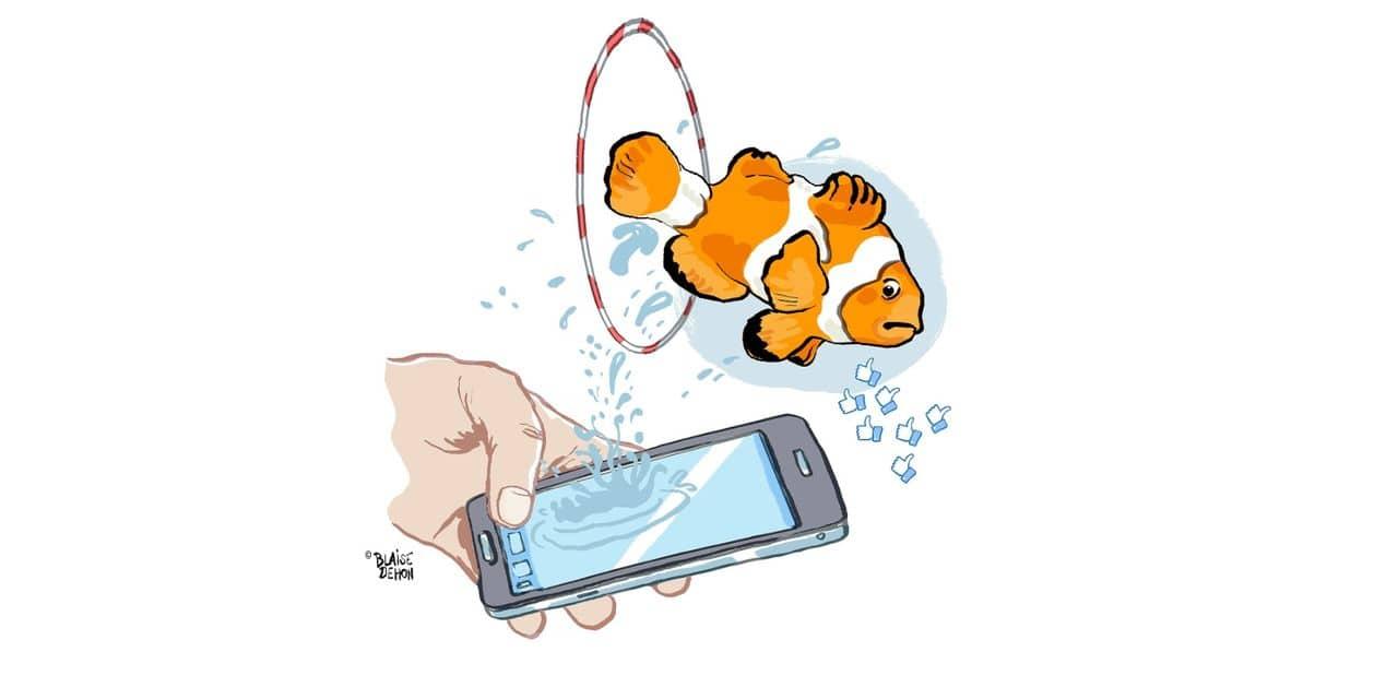 Et si on réinitialisait les réseaux sociaux en 2019 ?