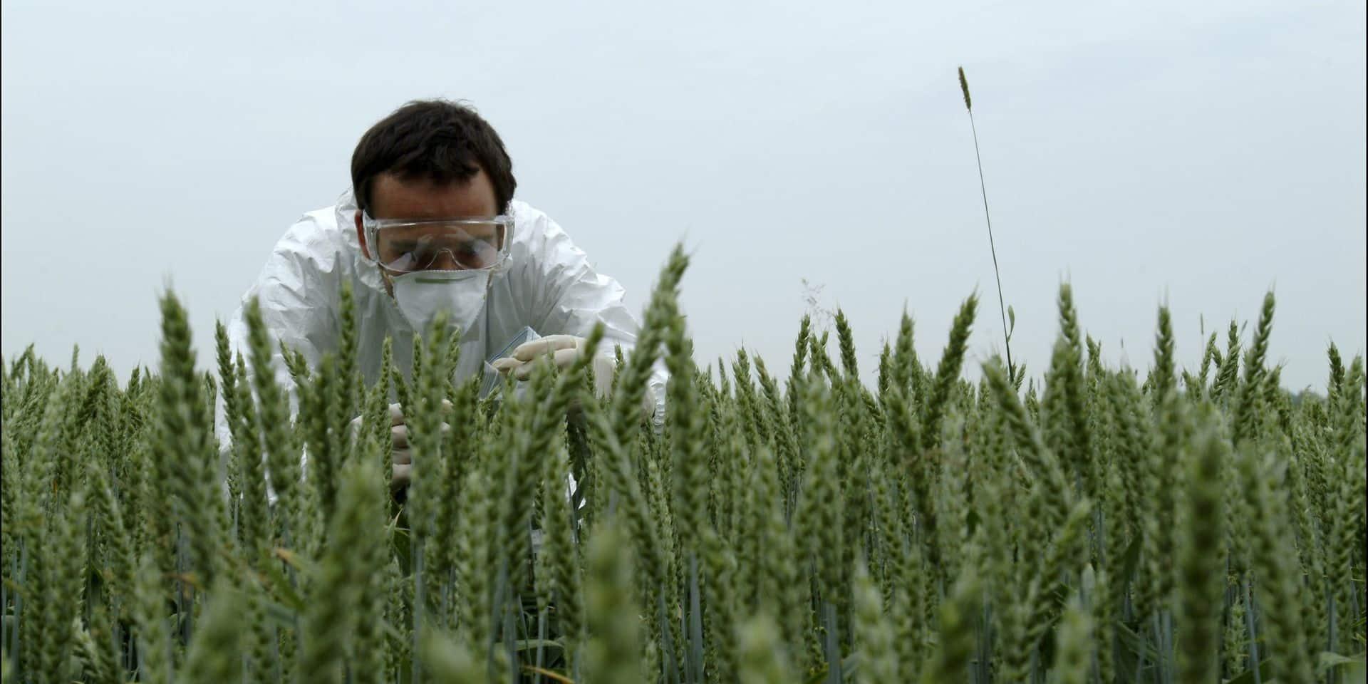"""Les """"nouveaux OGM"""" : une question citoyenne que l'on ne peut pas rater"""