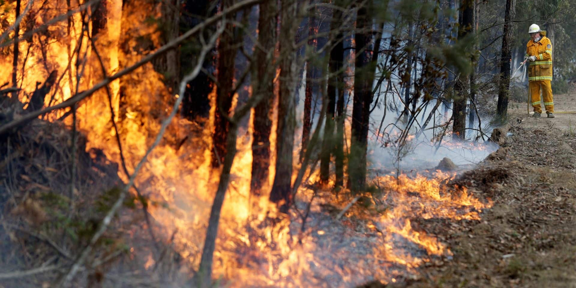 """L'Australie parvient à maîtriser un """"incendie géant"""" après plus de 10 semaines"""