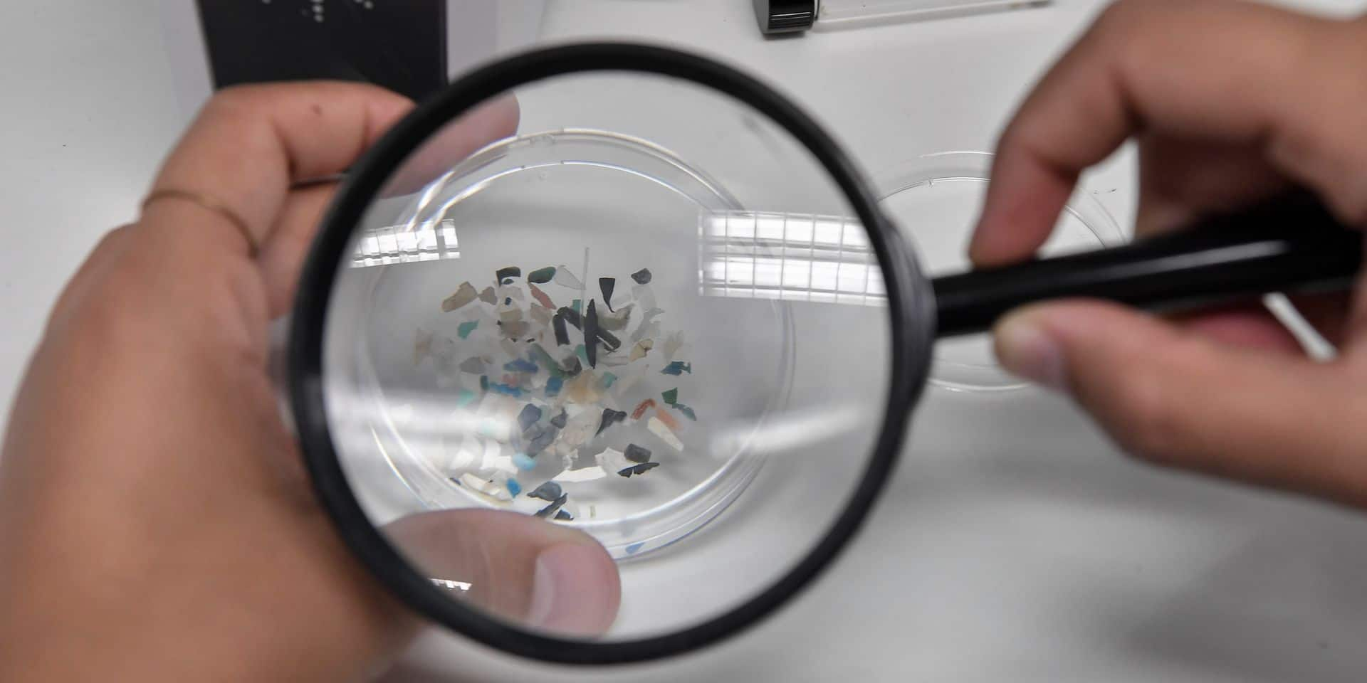 """Une étude inquiétante révèle qu'""""il n'y a aucun endroit à la surface de la Terre qui ne soit pas couvert de microplastiques"""""""