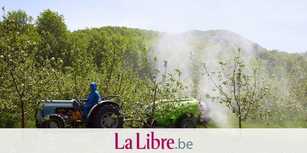 Spraying an apple orchard; St. Paul D'abbotsford, Quebec, Canada Reporters / Design Pics